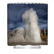 The Grand Show Shower Curtain
