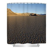 The Grandstand Shower Curtain