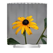 The Gray Day Of Yellow Shower Curtain