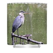 The Great Blue Shower Curtain