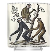 The Great Gibbon Shower Curtain