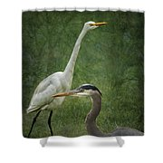 The Greats - Birds That Is... Shower Curtain