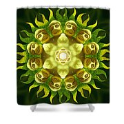 The Green Buddha Shower Curtain
