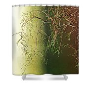 The Green End Of The Spectrum  Shower Curtain