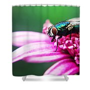 The Green Fly Shower Curtain