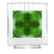 The Green Jewel Of Nature Mandala Shower Curtain