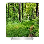 The Green Path Shower Curtain
