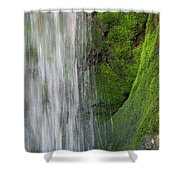 The Green Side Shower Curtain