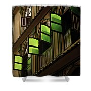 The Green Windows Shower Curtain