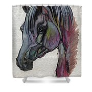 The Grey Horse Drawing 1 Shower Curtain