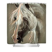 The Grey Horse Soft Pastel Shower Curtain