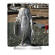 The Guardian No2 Shower Curtain
