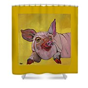 The Happiest Pig In The World Shower Curtain
