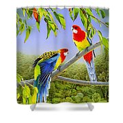 The Happy Couple - Eastern Rosellas  Shower Curtain