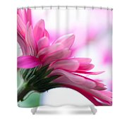 The Happy Flower Pink Daisy Shower Curtain