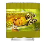 The Hare And The Trout Shower Curtain