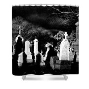 The Haunting Shadows Shower Curtain