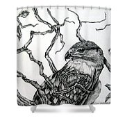 The Hawk Shower Curtain