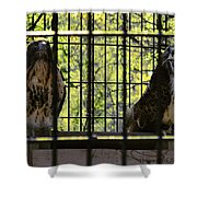 The Hawks From The Series The Imprint Of Man In Nature Shower Curtain