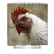 The Head Of A Rooster Shower Curtain
