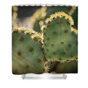 The Heart Of A Cactus  Shower Curtain