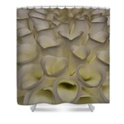 The Heart Of A Dahlia Shower Curtain