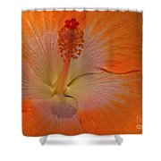 The Heart Of A Hibiscus Shower Curtain