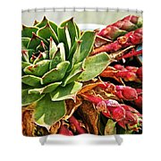 The Hen And Her Chicks  Shower Curtain