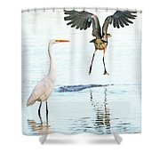The Heron With The Bird Face Butt. Shower Curtain