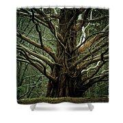 The Hobbit Tree Shower Curtain