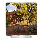 The Hogan Canyon Dechelly Park Shower Curtain