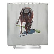 The Holy Cow And Dung 3 Shower Curtain