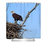 The Home Front Shower Curtain