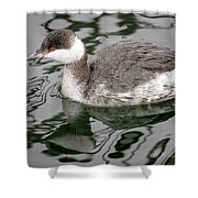 The Horned Grebe Shower Curtain