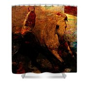 The Horses Of Mars Shower Curtain