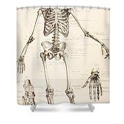 The Human Skeleton Shower Curtain
