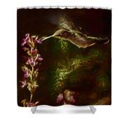 The Hummingbird Digital Art Shower Curtain