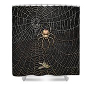 The Hunter And Its Pray - A Gold Fly Caught By A Gold Spider Shower Curtain