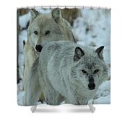 The Hunters Shower Curtain