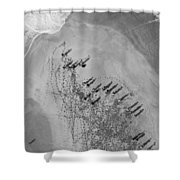 The Hunters Hunted Shower Curtain