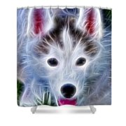 The Huskie Pup Shower Curtain by Bill Cannon