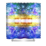 The Illusion Benches Shower Curtain