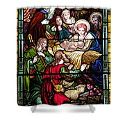 The Incarnation - Madonna And Child Shower Curtain
