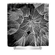 The Inner Weed Monochrome Shower Curtain