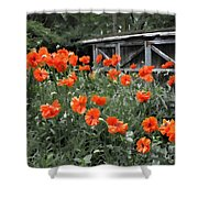 The Inspiration Of Orange Poppies Shower Curtain
