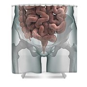 The Intestines Shower Curtain