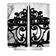 The Iron Gate Shower Curtain