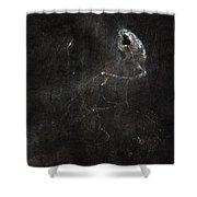 The Jabberwock Shower Curtain