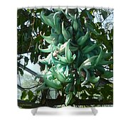 The Jade Vine Shower Curtain