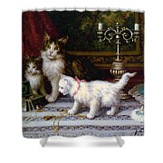 The Jewelry Box Shower Curtain